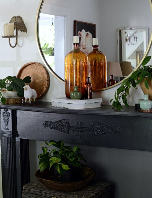 Houseplants on a Country Style Dark Gray Mantel
