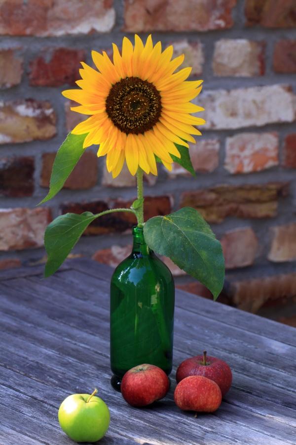 Single Sunflower in a Vintage Green Bottle