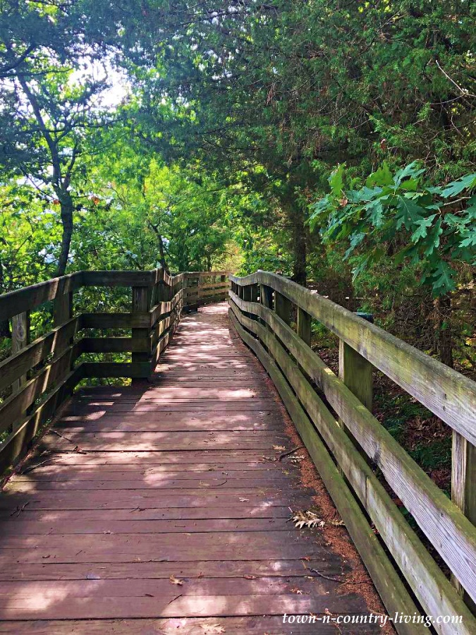 Long Wooden Boardwalk at Starved Rock State Park. A Great Place for a Mini Summer Vacation.