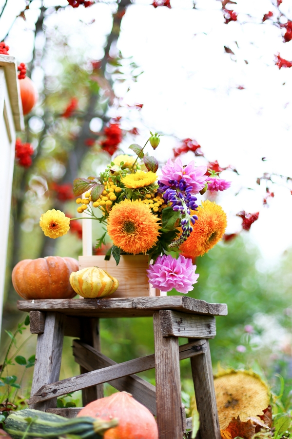 Autumn bouquet in wooden box, flowers vase on shabby rustic stool.