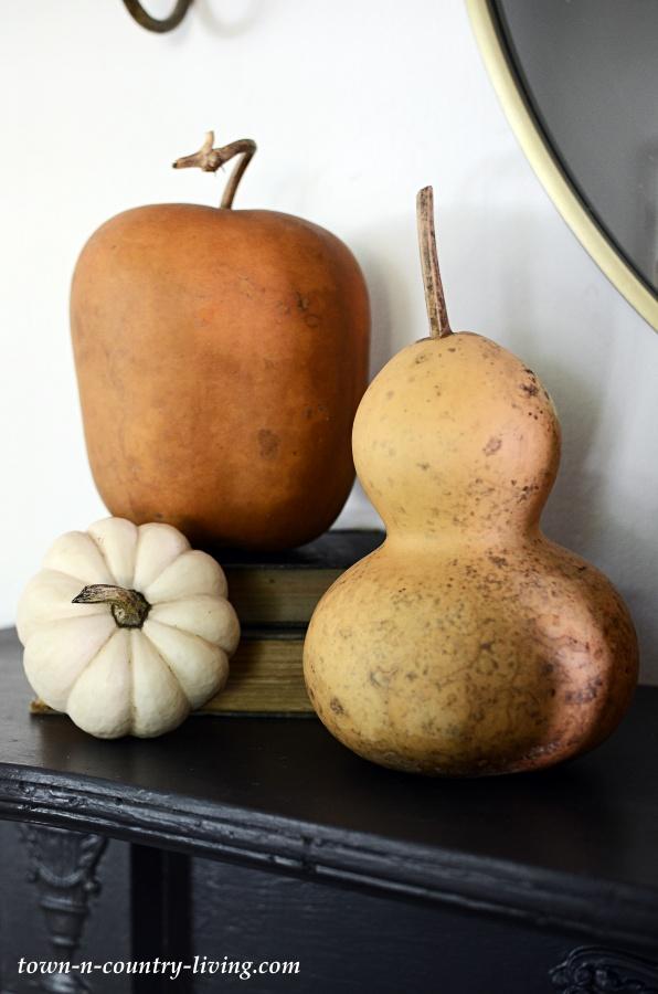 Dried Gourds Vignette
