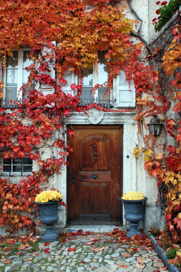 Autumn Leaves Above Wood Door and Mums for Fall Decor