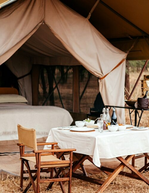 Glamping Vacation with Comfortable Bed