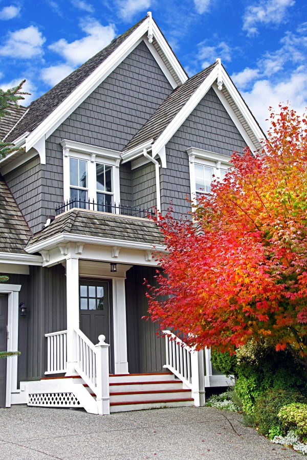 Dark Gray Traditional House with Fall Tree