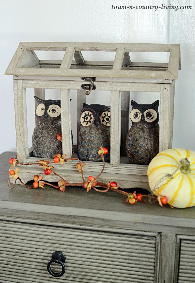 Owls in Wood Atrium