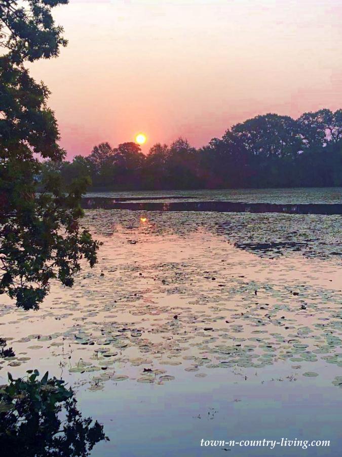 Sun Rise Over Private Lake in Cambridge, Wisconsin