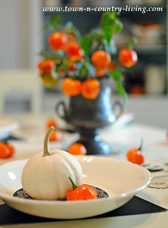 Halloween Table Setting with Habanero Peppers and Baby Boo Pumpkins