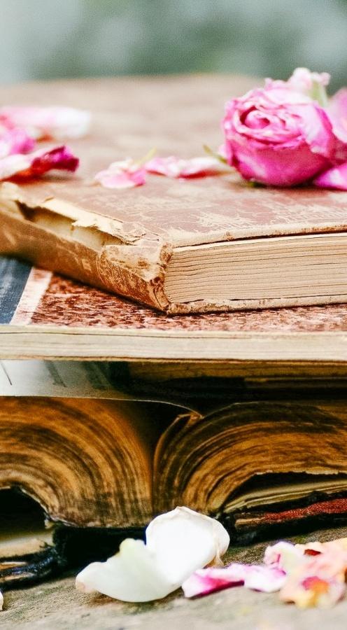 Books by Shabbyfufu