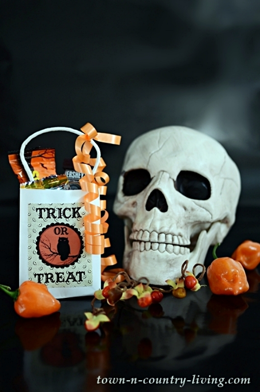 Vintage Halloween Treat Bags - How To Make