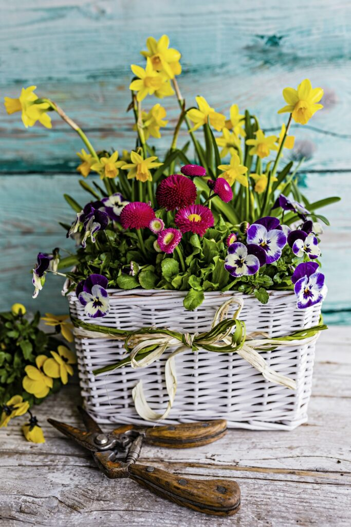 Spring Flowers in White Basket