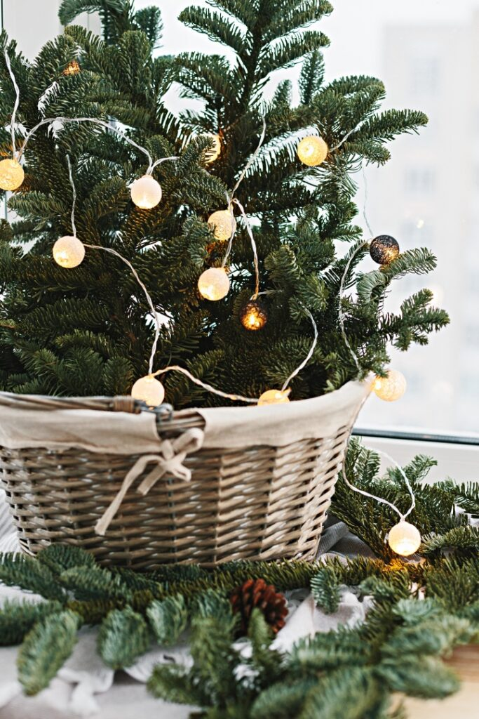 Small Christmas tree in basket with globe lights