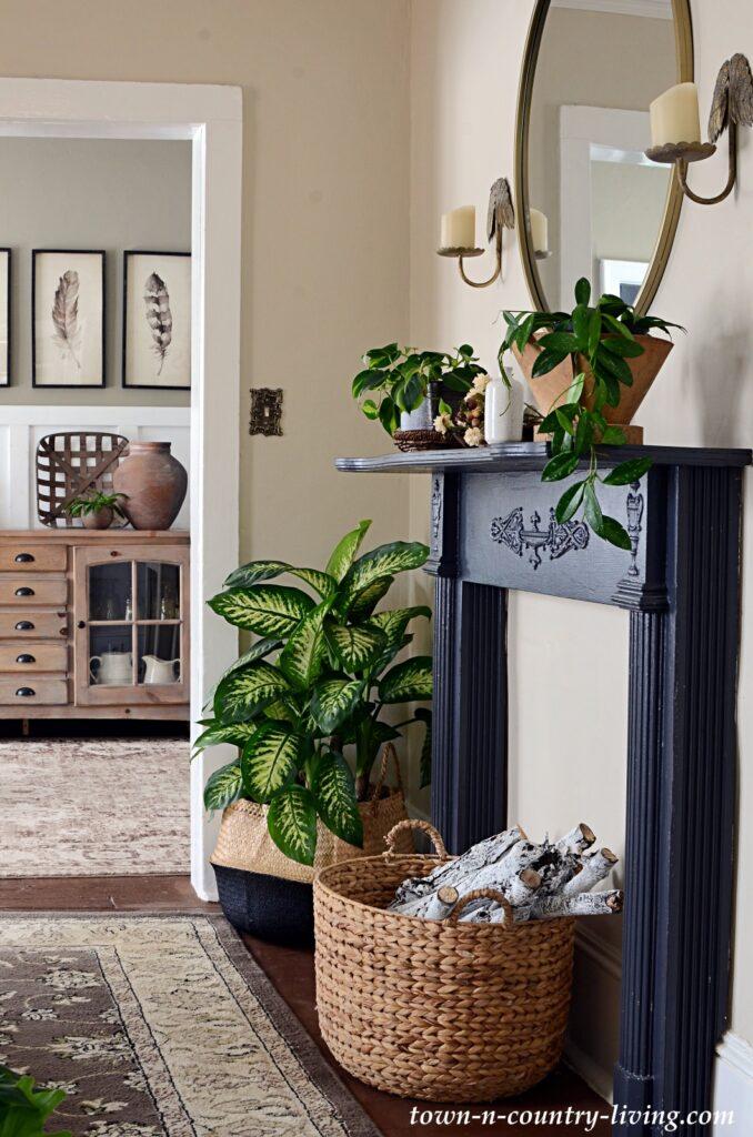Black Vintage Mantel with Houseplants