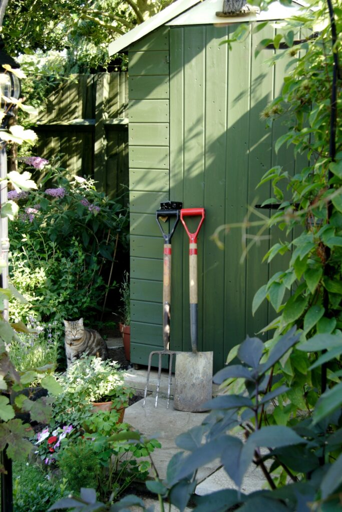 Small green garden shed with shovels and flowers