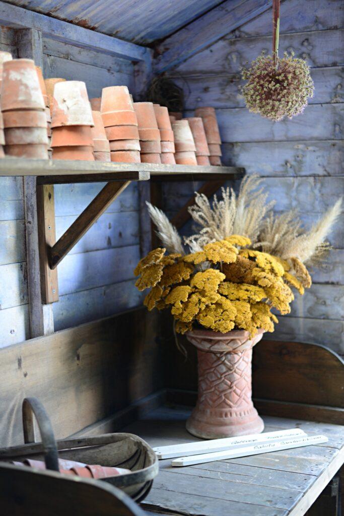 Inside an English potting shed