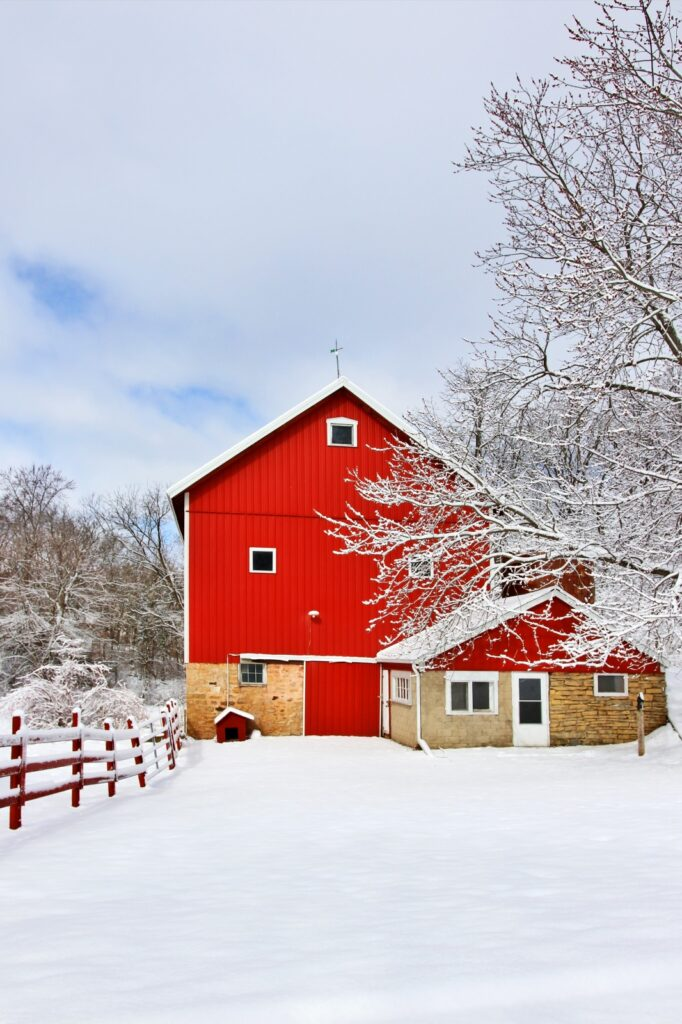Rural landscape with red barn, wooden red fence and trees covered by fresh snow in sunlight. Scenic winter view at Wisconsin,
