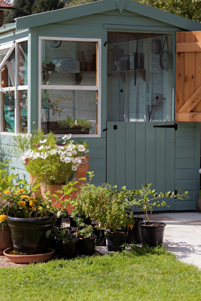 Gardeners paradise with stunning flowers and plants glowing in pots near a potting shed