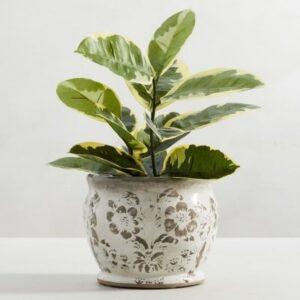 floral ceramic garden pot