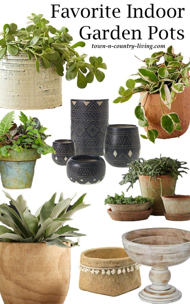 Favorite Indoor Garden Pots