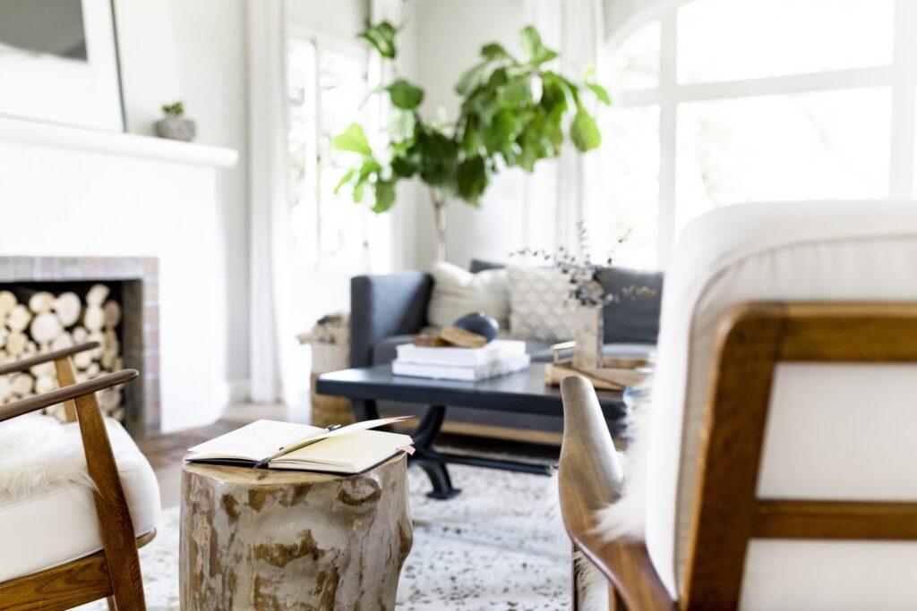 Minimalist Style Living Room in Boho Chic Decor