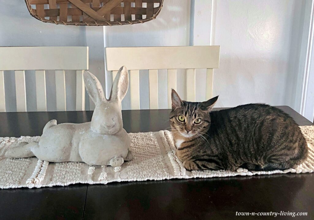 Mignette the Cat with a Decorative Stone Bunny