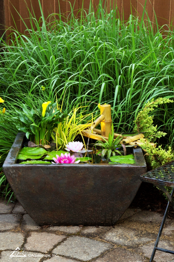 Aquascape Patio Pond - Container Water Garden with Waterlilies