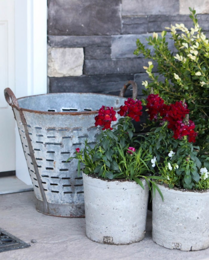 Concrete Planters by Fox Hollow Cottage