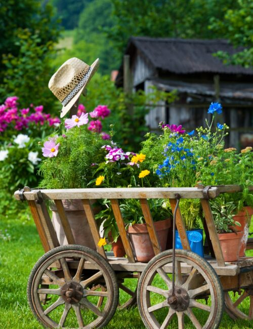 Rustic Garden Wagon Filled with Flowers