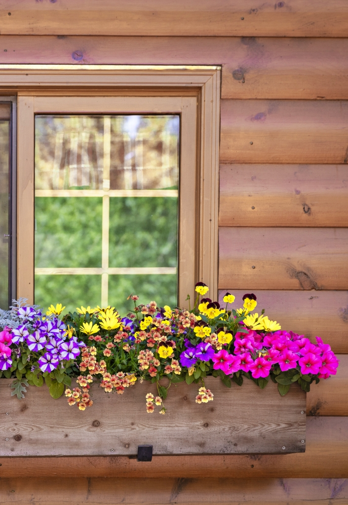 Log Cabin Window with Summer Flower Box