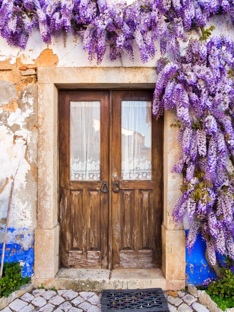 Lila Glyzinienpflanze wächst um die Türen eines alten Hauses in Portugal.