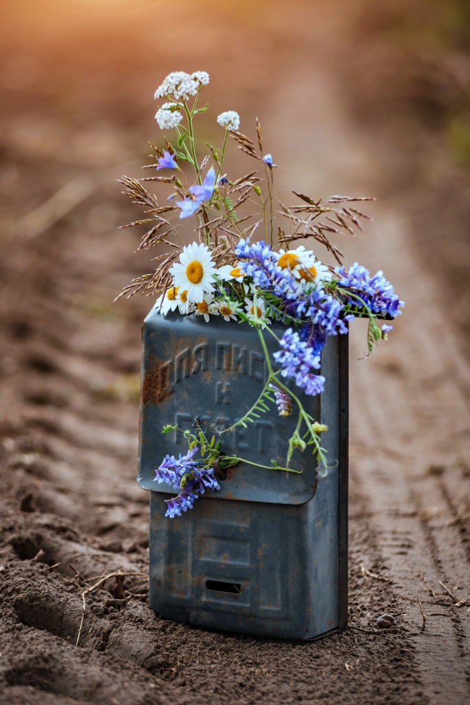 Floral arrangement of wildflowers in an old mailbox.