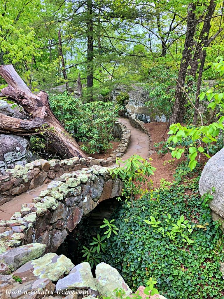 Garden Path in Northern Georgia