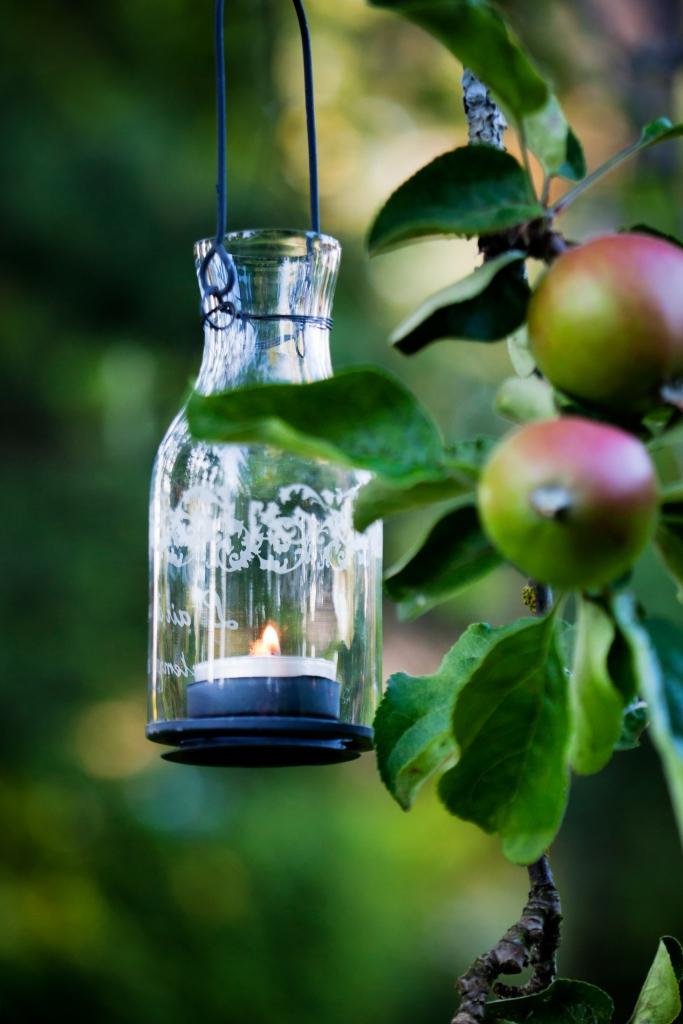 Beautiful glass lantern hanging from apple tree