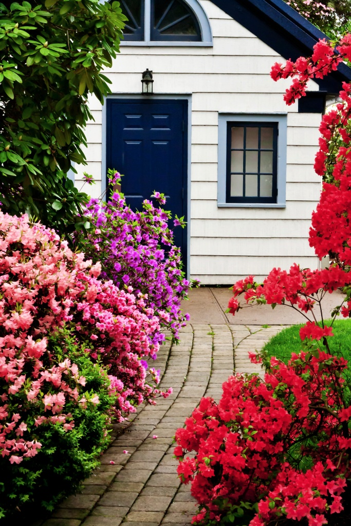 White Cottage in a Colorful Garden