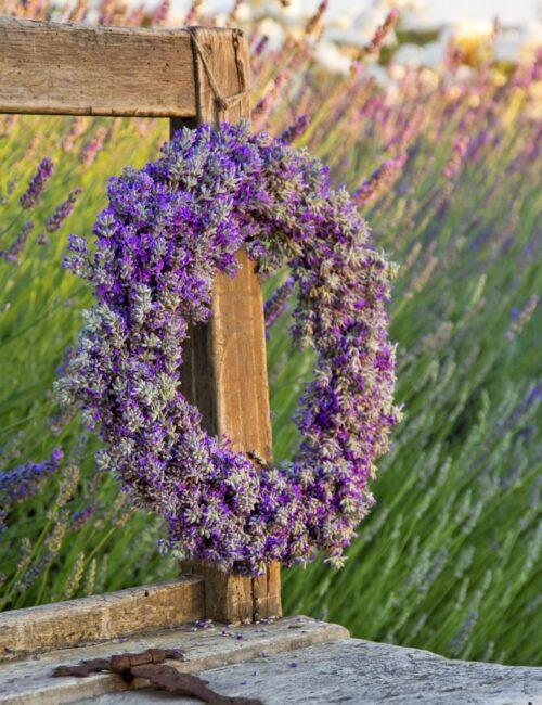Lavender flower wreath on a wooden old bench in a summer garden