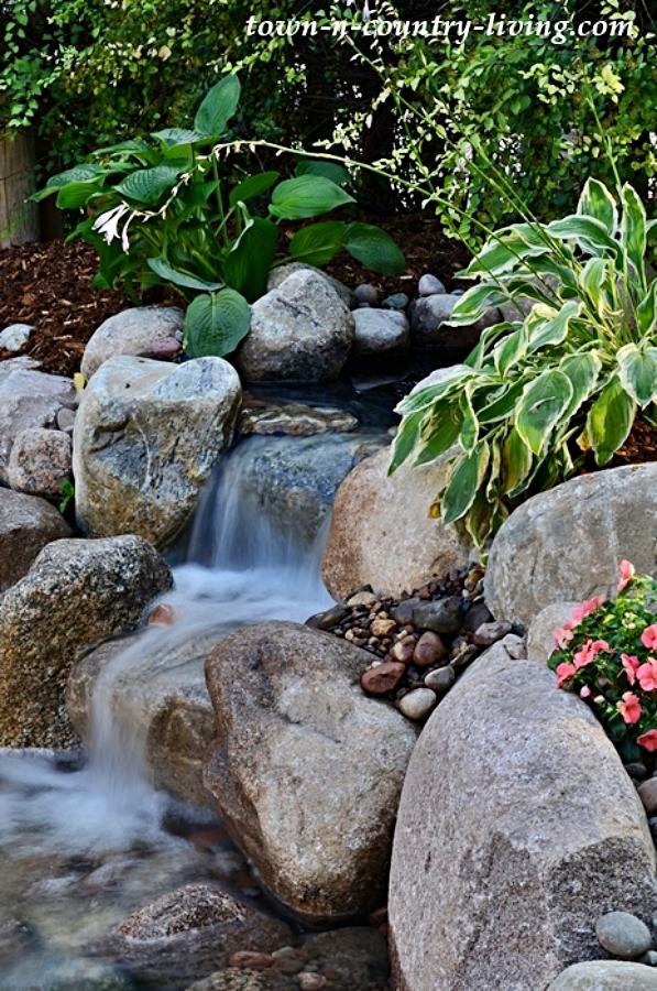 Backyard Waterfall in an Aquascape Ecosystem Pond