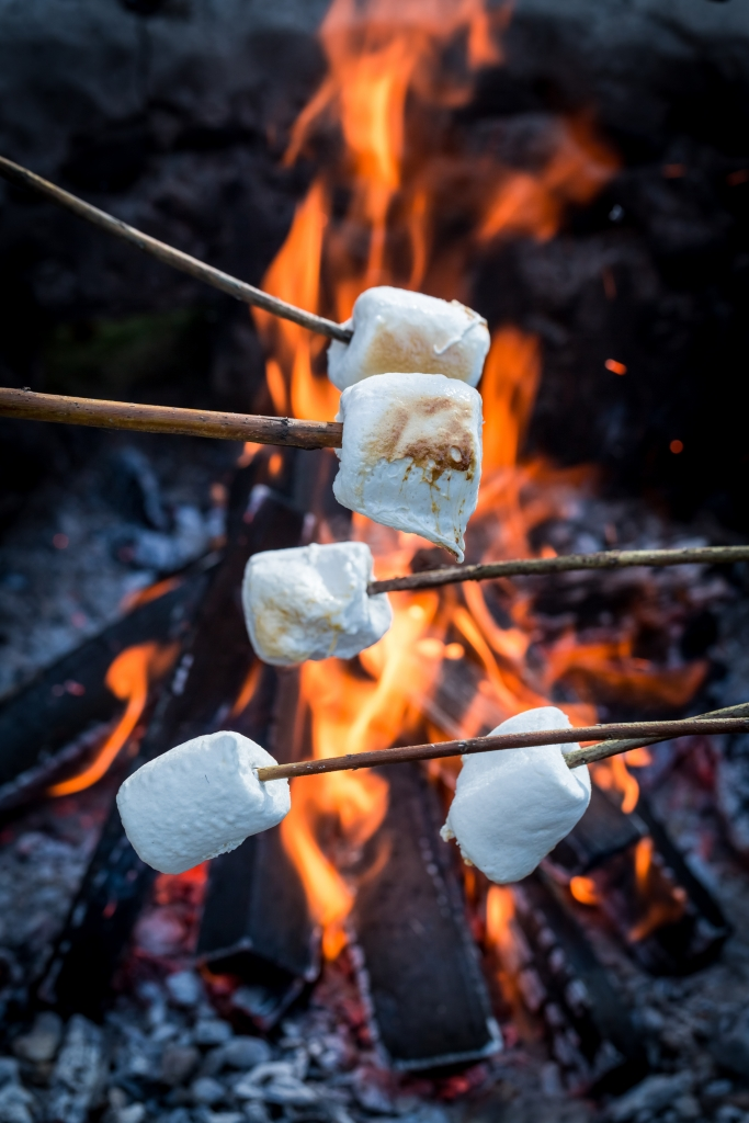 Sweet and hot marshmallows on stick over the bonfire