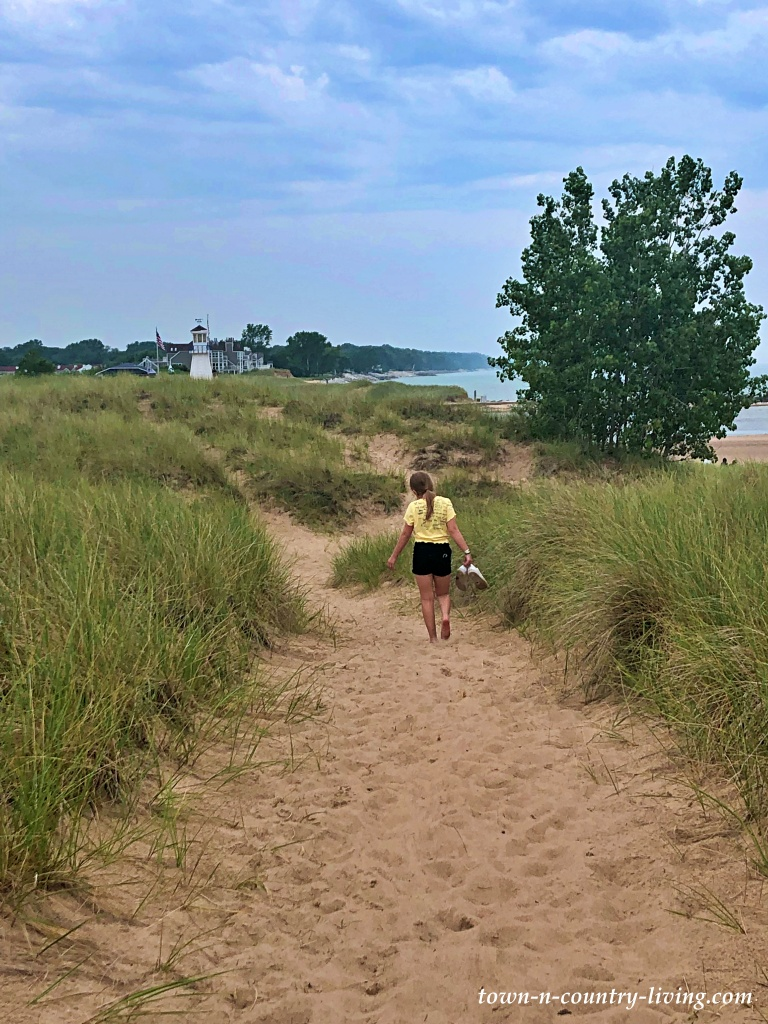 Sand Dunes at the Beach in New Buffalo