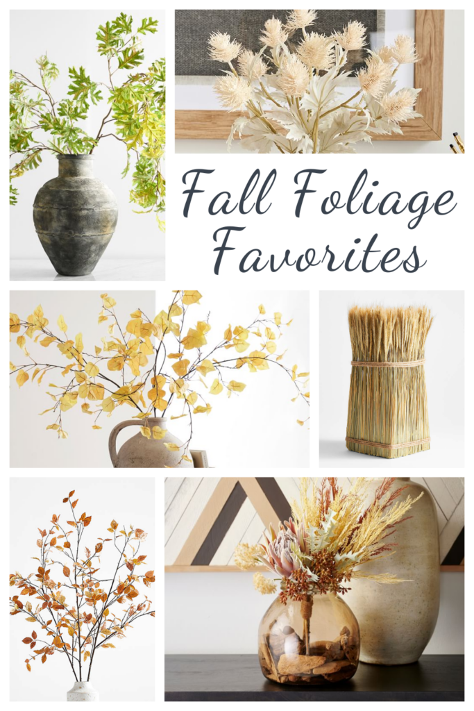 Fall Foliage Favorites - Where to Buy