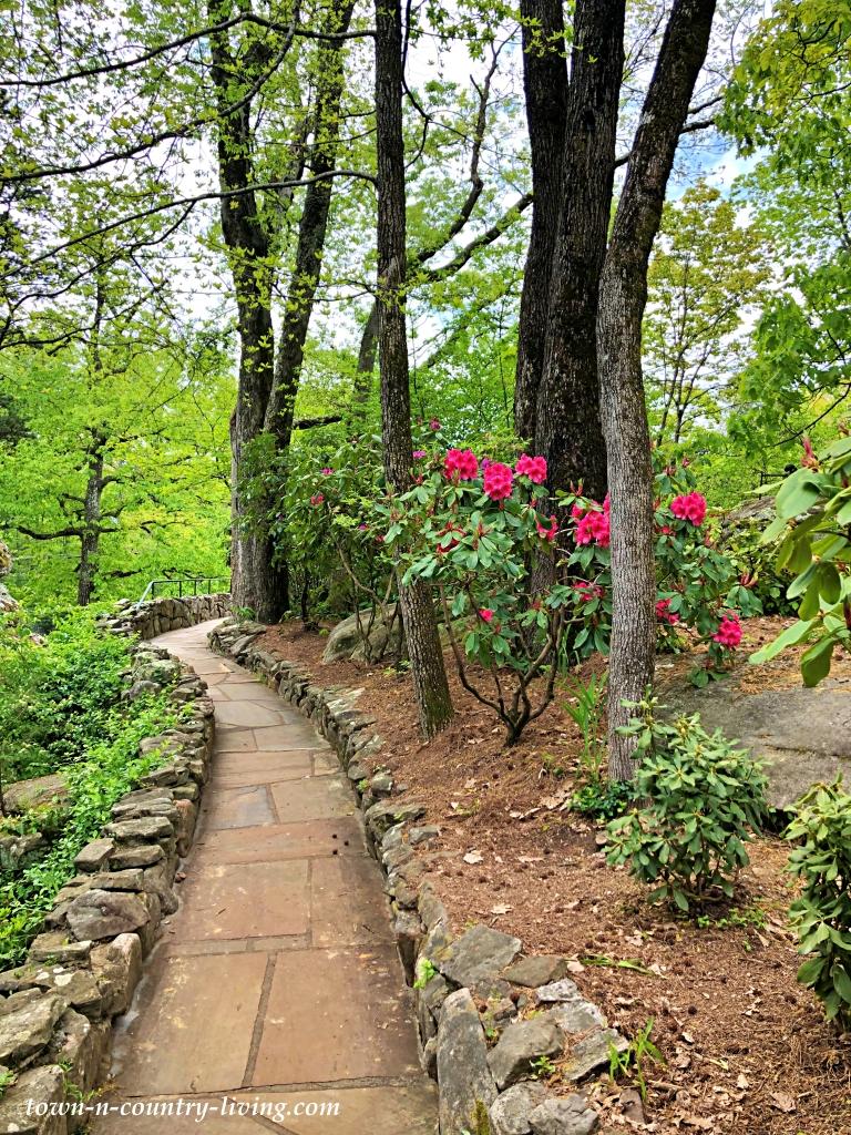 Paver path in Georgia garden