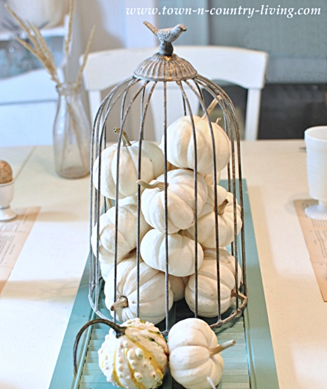 Cloche filled with white baby boo pumpkins