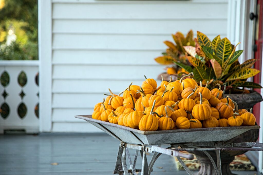 Wheelbarrow Of Little Pumpkins Fall Decor On Porch