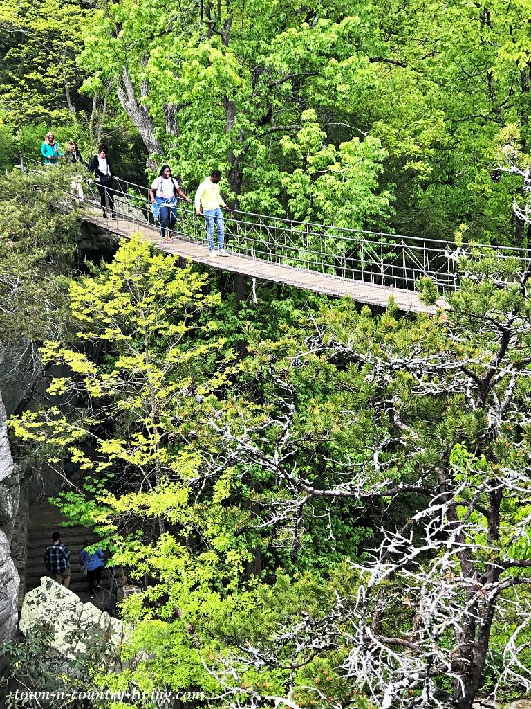 Suspension bridge at Rock City Garden