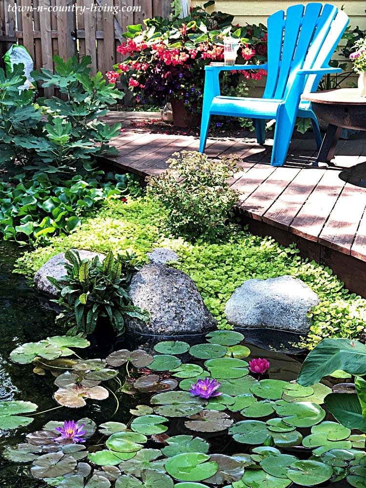Backyard Deck Next to Garden Koi Pond