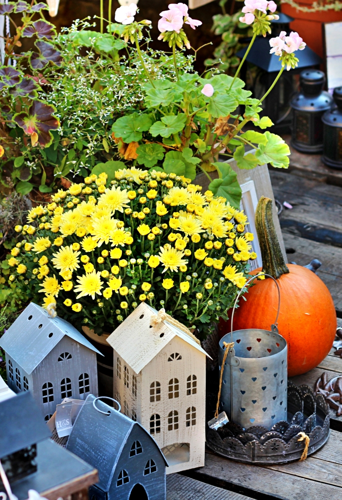 Mums with Tin Houses and Pumpkins on Porch