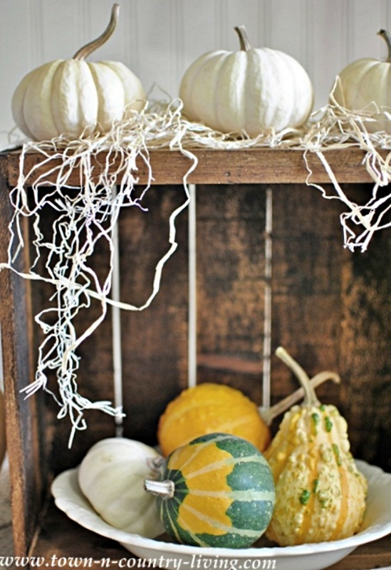 Fall Gourds in a Vintage Crate