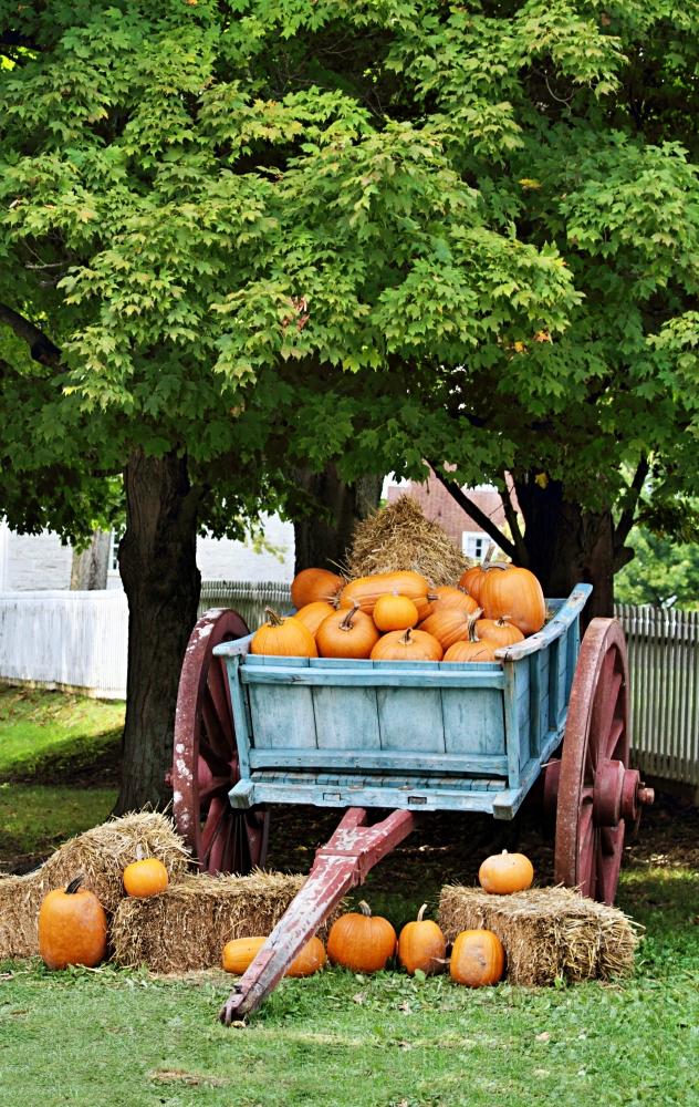 Outdoor fall arrangement of pumpkins in a vintage wooden wagon