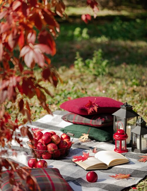 Fall picnic with blanket and pillows