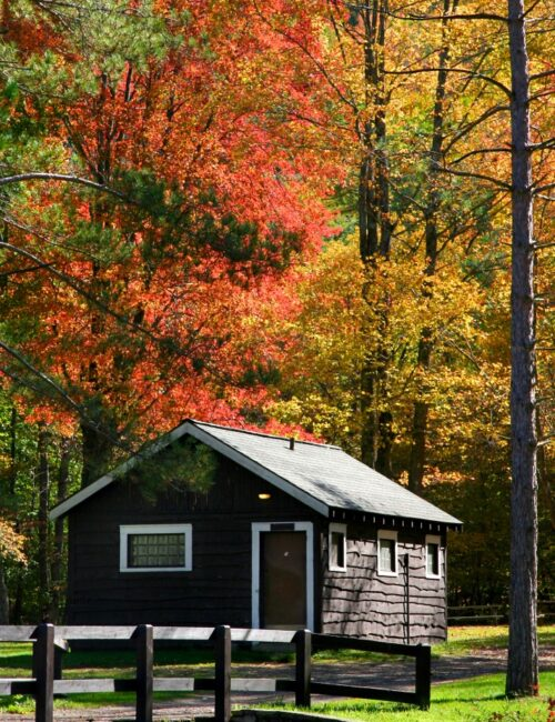 Little Cabin in the Woods during Autumn
