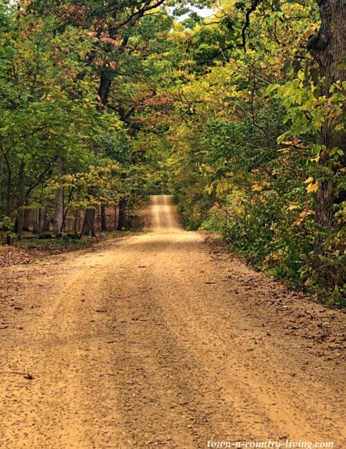 Gravel Country Road through forest leading to the Rock River in Oregon, Illinois