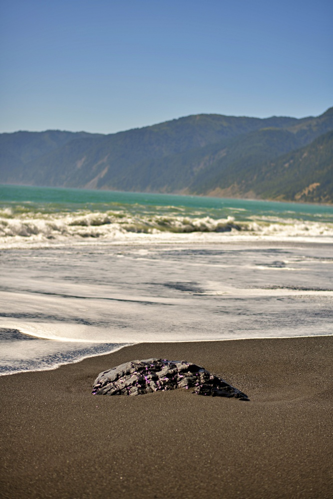 Black rock in a black sand beach on The Lost Coast Trail in northern California